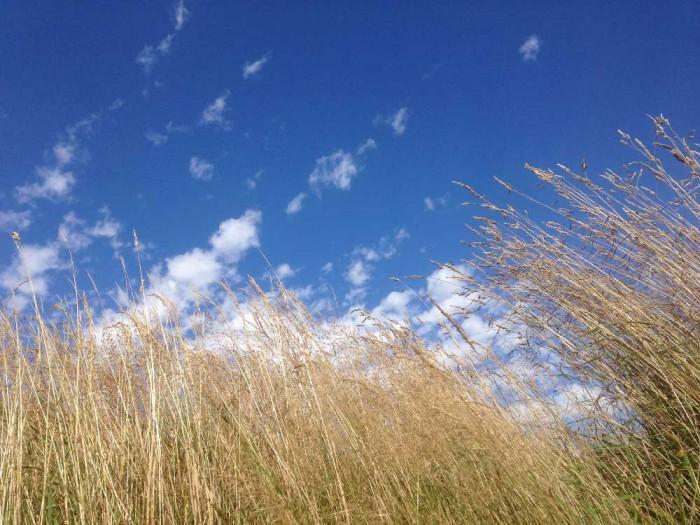 Blue-skies-at-Clasheen